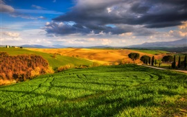 Preview wallpaper Italy, Tuscany, beautiful nature, fields, meadows, trees, sunny