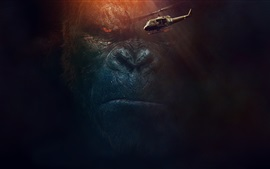 Kong: Skull Island, 2017 movie