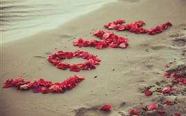 Love, rose petals, beach