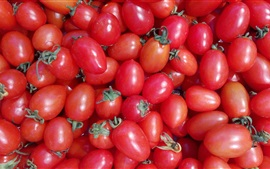 Many red cherry tomatoes