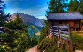 Preview wallpaper Mountains, road, trees, grass, wood house