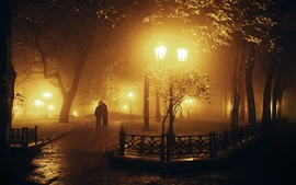 Park at night, lights, trees, lovers, kiss