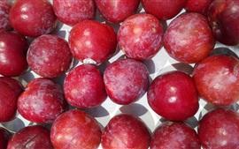 미리보기 배경 화면 붉은 자두, 과일 사진