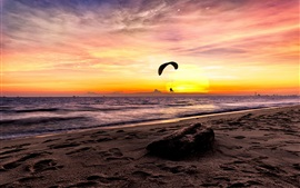 Sea, paraglider, sunset, beach