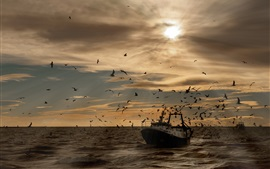 Seabirds, gaivotas, navio, mar, ondas, pôr do sol