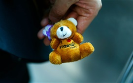 Preview wallpaper Teddy bear, toy close-up, hand