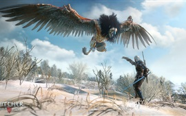 Preview wallpaper The Witcher 3: Wild Hunt, monster bird