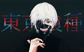 Preview wallpaper Tokyo Ghoul, white hair boy, anime