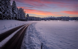 Winter, road, trees, thick snow, sunset