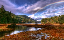 Beautiful nature landscape after rain, rainbow, trees, lake, autumn