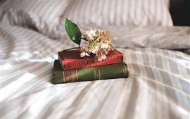 Preview wallpaper Books, flowers, bed, still life