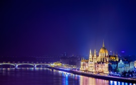 Budapest, Hungary, night city, river, bridge, buildings, lights