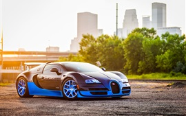 Preview wallpaper Bugatti Veyron blue car side view, city, sunshine