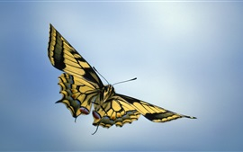 Preview wallpaper Butterfly flying, wings, sky