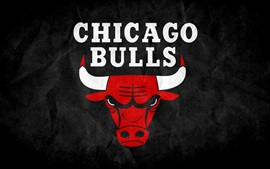 Preview wallpaper Chicago Bulls logo