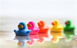 Preview wallpaper Colorful duck toys in water