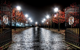 England, night, trees, road, gate, lights