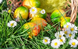 Flowers, grass, spring, Easter eggs