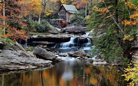 Preview wallpaper Forest, hut, creek, trees, mill, stones, autumn