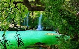 숲, 호수, 녹색, 나무, 폭포