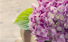 Preview wallpaper Hydrangea, pink flowers, book