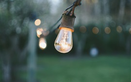 预览壁纸 灯,电,散景