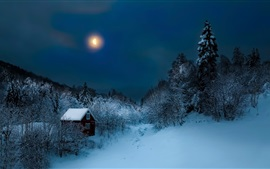 Preview wallpaper Night, trees, snow, winter, hut, moon
