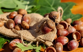Preview wallpaper Nuts, acorns