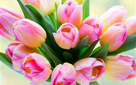 Preview wallpaper Pink tulips, buds, leaves, bouquet
