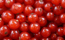 Preview wallpaper Red currant, berries