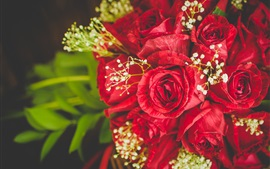 Red roses bouquet, flowers close-up