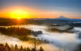 Preview wallpaper Sunrise, fog, trees, morning, mountains