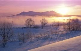 Winter morning, fog, mountains, snow, sunrise