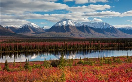 Alaska, mountains, forest, autumn, river, USA
