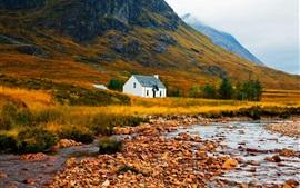 Otoño, montaña, pendiente, hierba, piedras, casa
