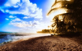 Preview wallpaper Beautiful beach, sunset, sea, coast, palm trees, clouds