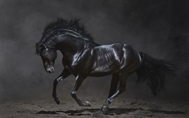 Preview wallpaper Black horse run in the dark