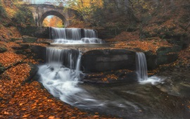 Preview wallpaper Bulgaria, bridge, waterfall, leaves, trees, autumn