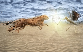 Guepardo y pájaro, cara a cara, playa, imagen creativa