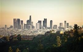 도시, 고층 빌딩, 건물, 빌라, 나무