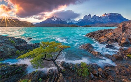 Preview wallpaper Cuernos del Paine, Patagonia, Chile, Lake Pehoe, mountains, tree, sunrise