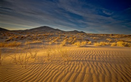 Desert, sands, grass, clouds