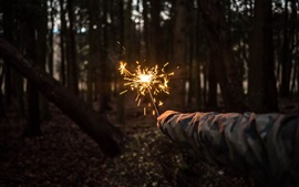 Forest, hand, fireworks