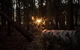 Bosque, mano, fuegos artificiales
