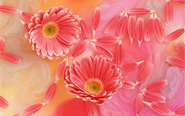 Preview wallpaper Gerbera pink petals, tenderness