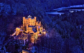 Preview wallpaper Germany, Bavaria, Hohenschwangau Castle , trees, winter, snow