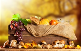 Preview wallpaper Grapes, mushrooms, pumpkin, pear, box, autumn