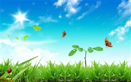 Preview wallpaper Grass, plants, ladybug, blue sky, sun
