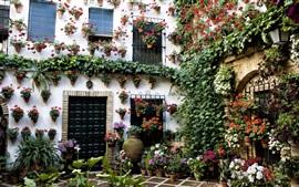 Hogar, hermoso jardín, flores