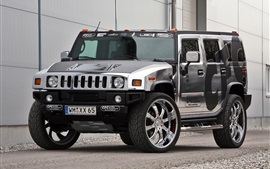 Coche Hummer H2 CFC